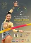 CARTEL-base-indiv-copa-reina-2014-guadalajara