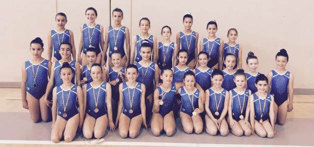 Deporte Infantil Club Gimnástico Las Rozas